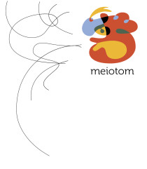 meiotom_marca_2013
